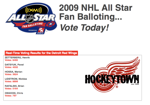 Vote for your favorite Detroit Red Wing in the NHL All Star Fan Ballot