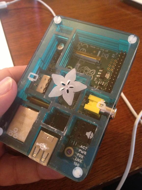Raspberry Pi Board, in Pi Bow Case